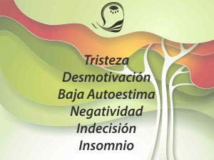 Depresión, Desmotivación, Baja Autoestima, Negatividad, Indecisión, Insomnio